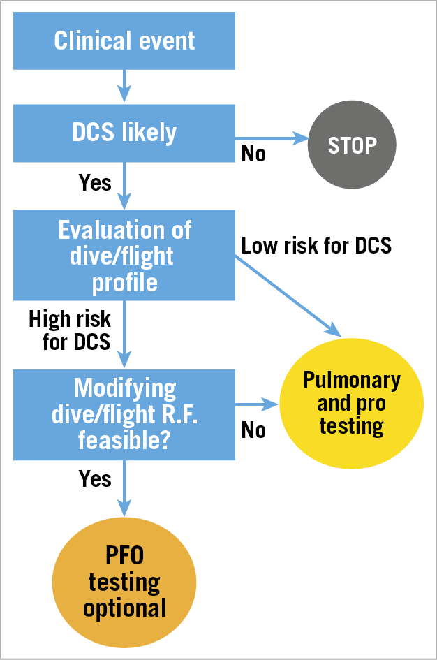 Figure 1. Flow chart depicting strategy for investigation after DCS. R.F.: risk factors