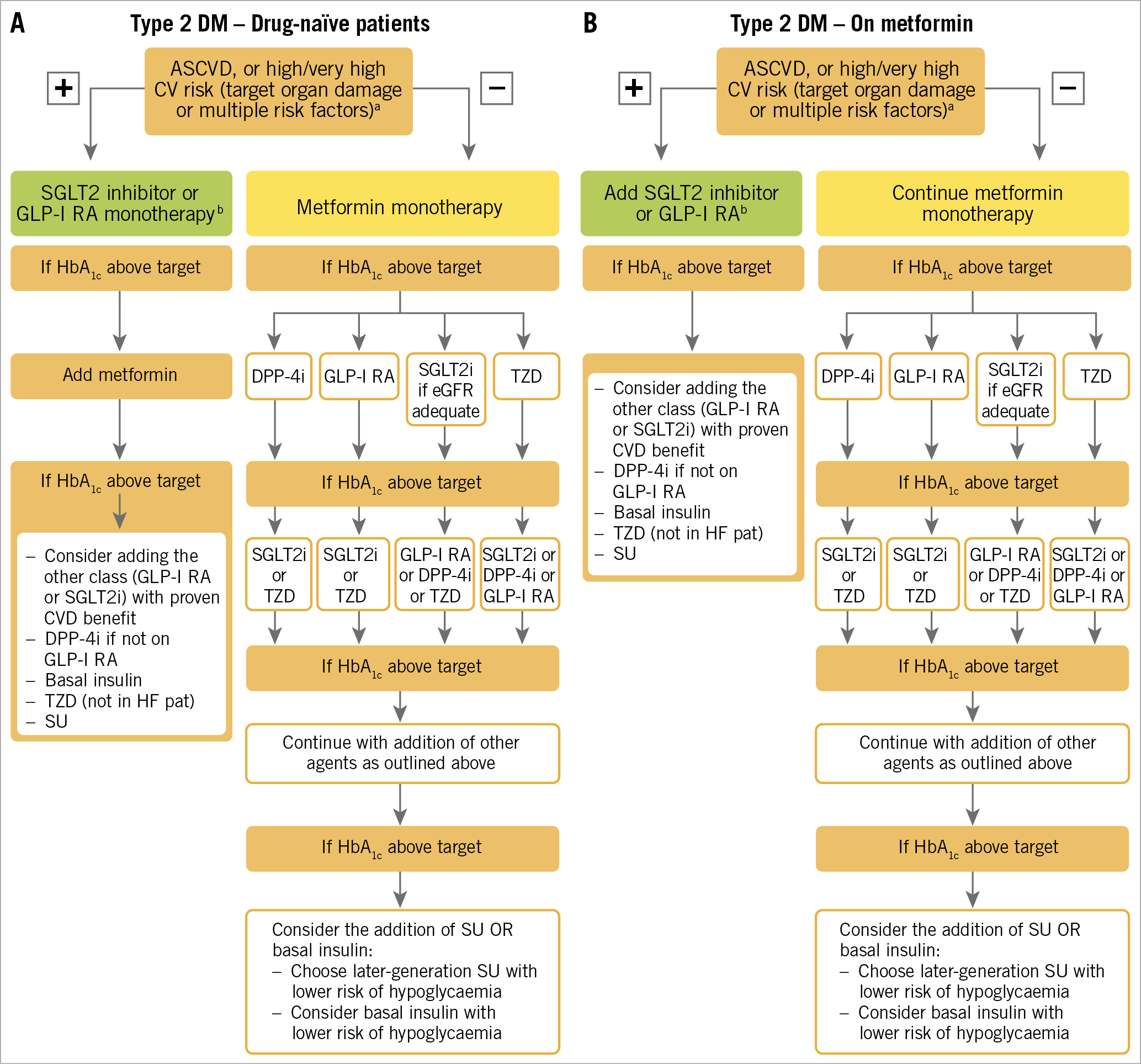 Figure 3. Treatment algorithm in patients with T2DM and ASCVD or high/very high CV risk. A) Drug-naïve patients. B) Metformin-treated patients. Treatment algorithm proposed by the 2019 ESC guidelines on CVD, pre-DM and DM, reproduced from reference 18 with permission from Oxford University Press on behalf of the European Society of Cardiology. ASCVD: atherosclerotic cardiovascular disease; CV: cardiovascular; CVD: cardiovascular disease; DPP4i: dipeptidyl peptidase-4 inhibitor; eGFR: estimated glomerular filtration rate; GLP1-RA: glucagon-like peptide-1 receptor agonist; HbA1c: haemoglobin A1c; SGLT2i: sodium-glucose co-transporter-2 inhibitor; T2DM: type 2 diabetes mellitus; TZD: thiazolidinedion
